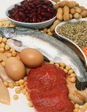 Alimentos fornecedores de proteínas