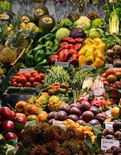 Conhece estes alimentos?